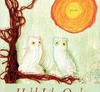 Alumni Reading Series: Poet Julia Koets