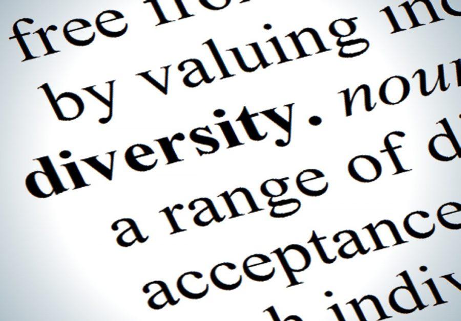 diversity definition